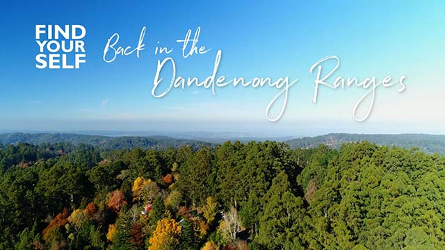 Aerial view of the beautiful Dandenong Ranges in Autumn beneath a blue sky